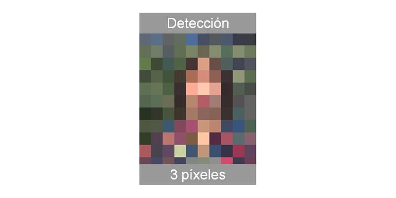 Video Vigilancia Detección
